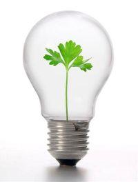 CSR LightbulbMedium